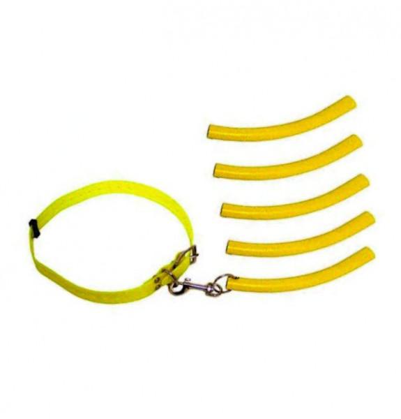 Waidwerk Bringsel Halsband und Übungsbringsel signalgelb Set