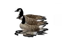 FUD Lockvogel Kanadagans 6er Pack